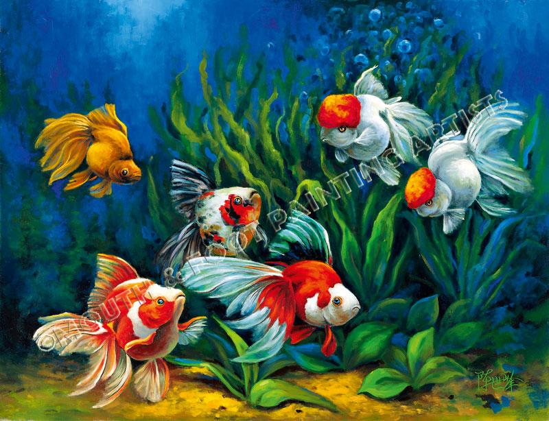 Fishy Forays