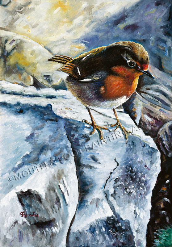 Robin on the rock