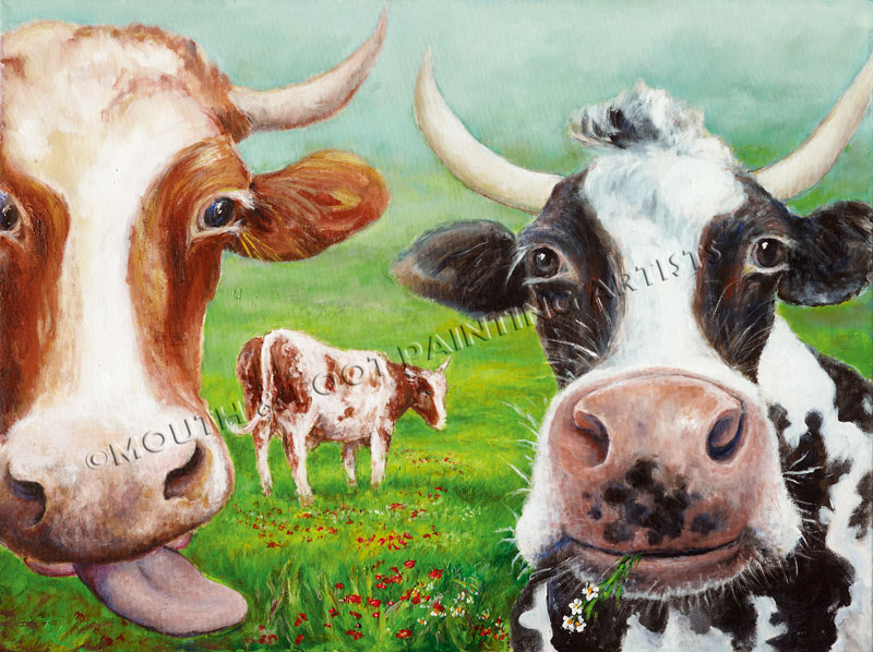 Cows Musing