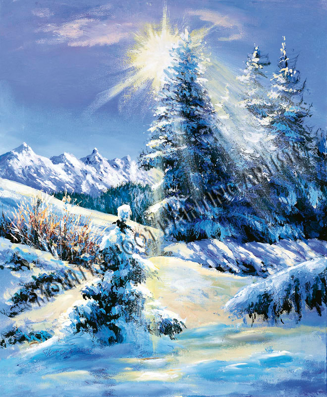 Snowed Splendour