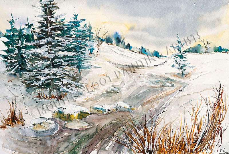 Snows Domain