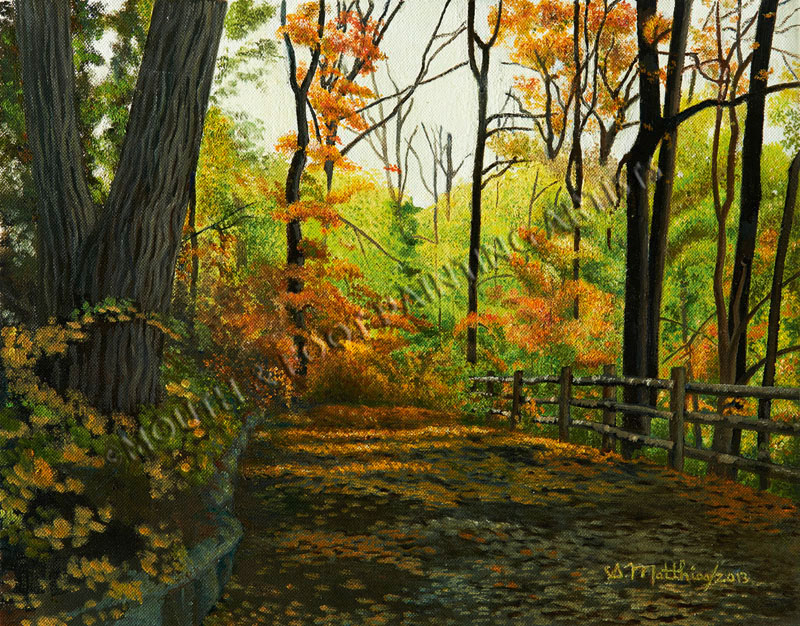 Late autumn in Springbank Park