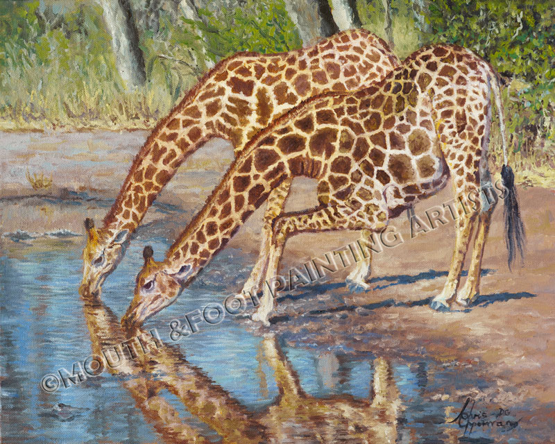 Thirsty Giraffes
