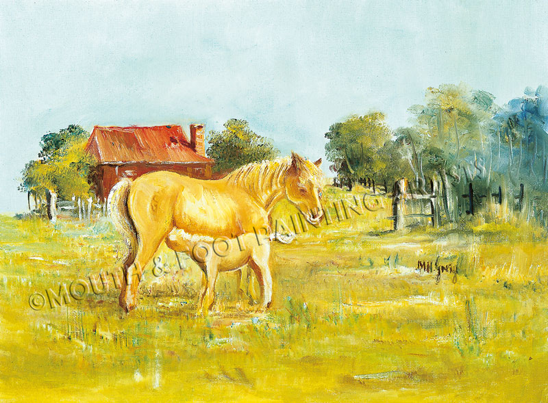 Foal's Dream