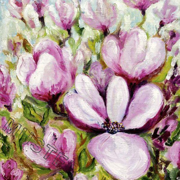 Moye magnolie