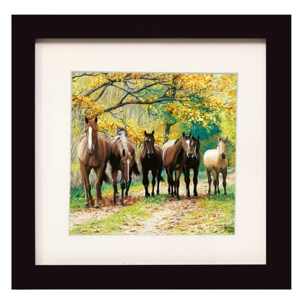 Autumn N horses